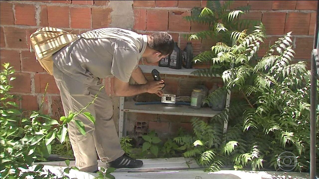Casos de chikungunya aumentam 80% no Ceará em um mês