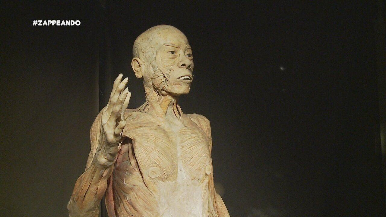 Moacyr e Isa acompanham uma exposição sobre o corpo humano