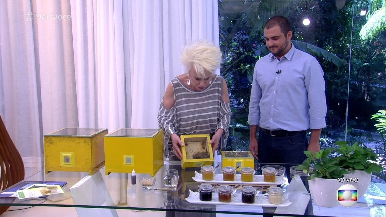 Cristiano Menezes mostra espécies de abelhas sem ferrão