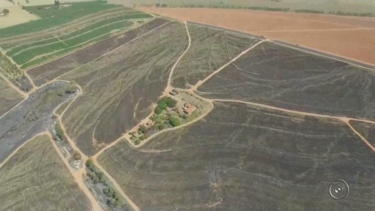 Incêndio em Iacri causou danos a seis áreas de proteção ambiental