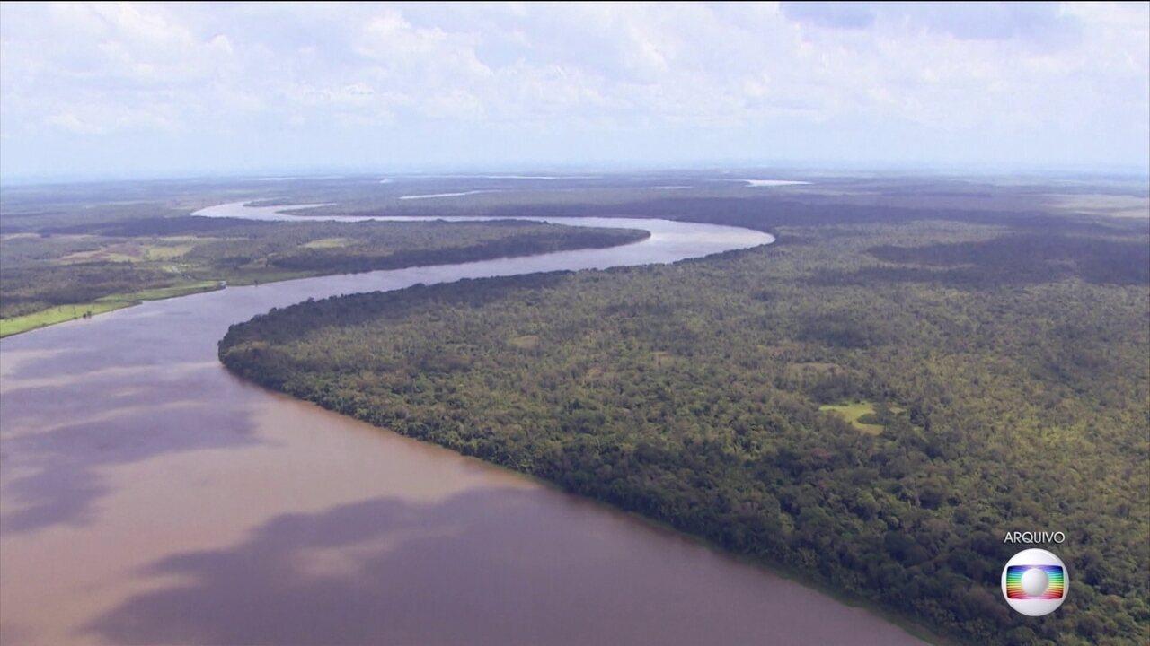 Gisele Bündchen critica extinção de reserva na Amazônia: 'Vergonha'