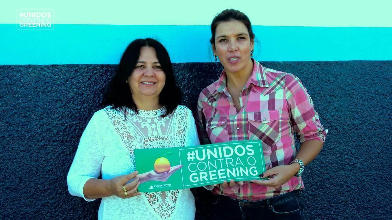 Fundecitrus: referência mundial em geração de conhecimento para a citricultura