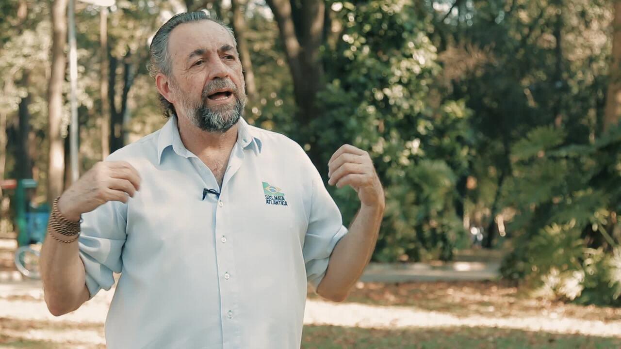 Mario Mantovani,  Fundação SOS Mata Atlântica