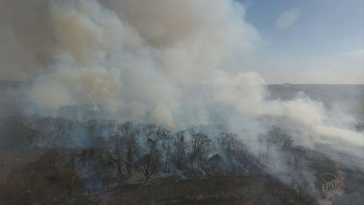 Área rural pega fogo às margens de rodovia em Ribeirão Preto
