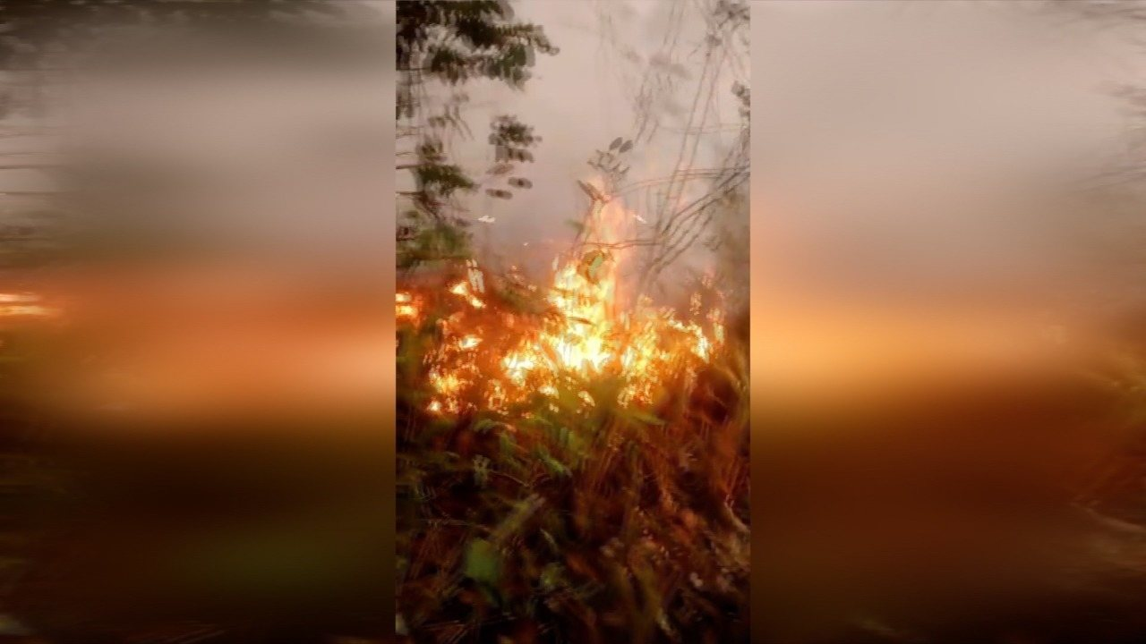 Incêndio atinge restinga em Rio das Ostras, RJ, na tarde desta segunda-feira