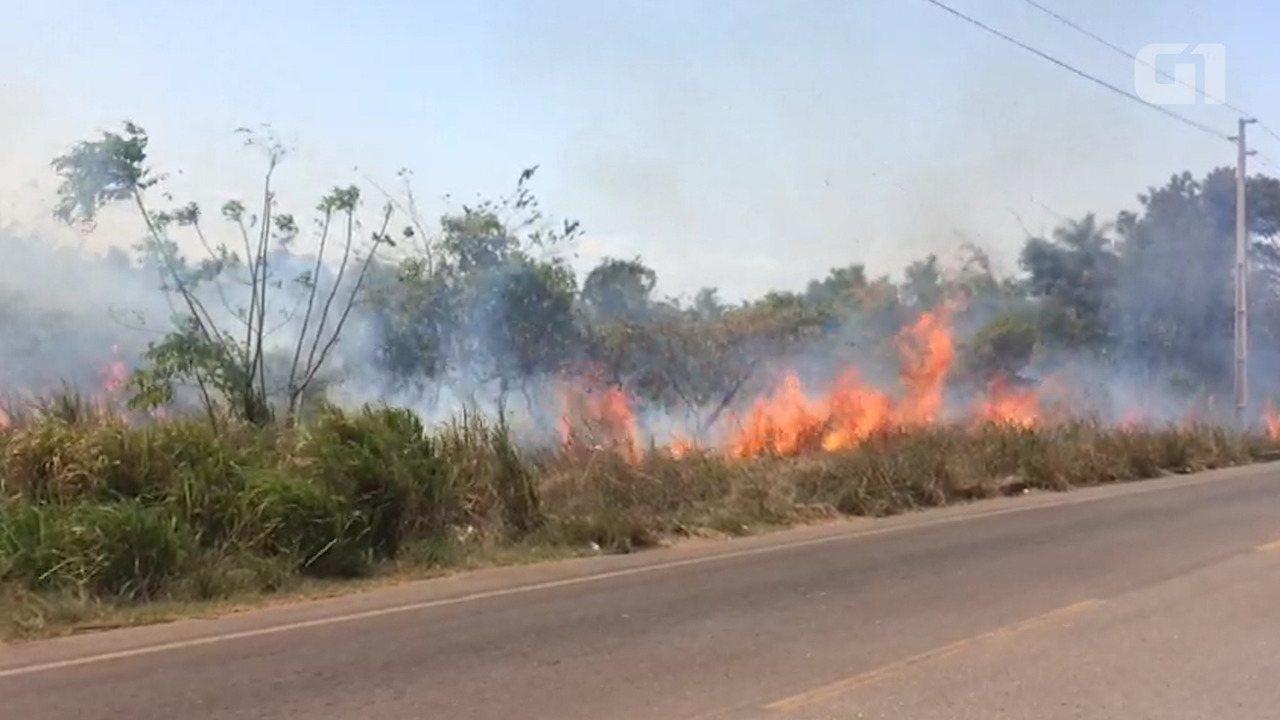 Incêndio consome vegetação às margens da PA-370 e prejudica visibilidade; vídeo