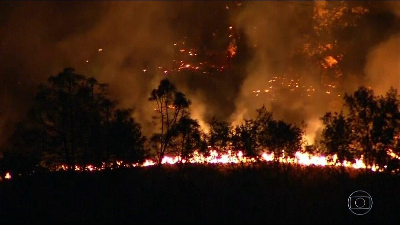 Nos EUA, 29 pessoas morrem em incêndios florestais na Califórnia