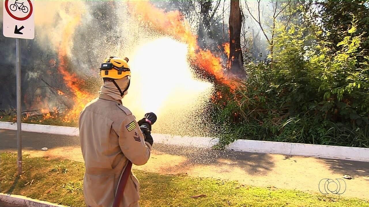Incêndio no Parque Nacional da Chapada dos Veadeiros já dura mais de 48h, em Goiás