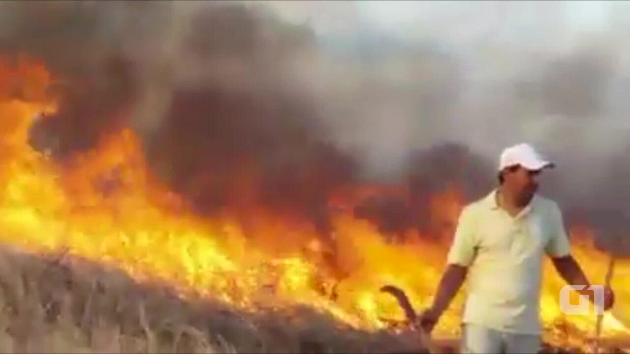 Incêndio atinge área com mata em Ingazeira na quarta-feira (1º)