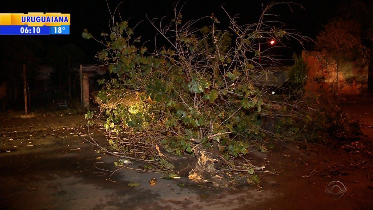 Temporal causa estragos em Santa Rosa e Santa Maria