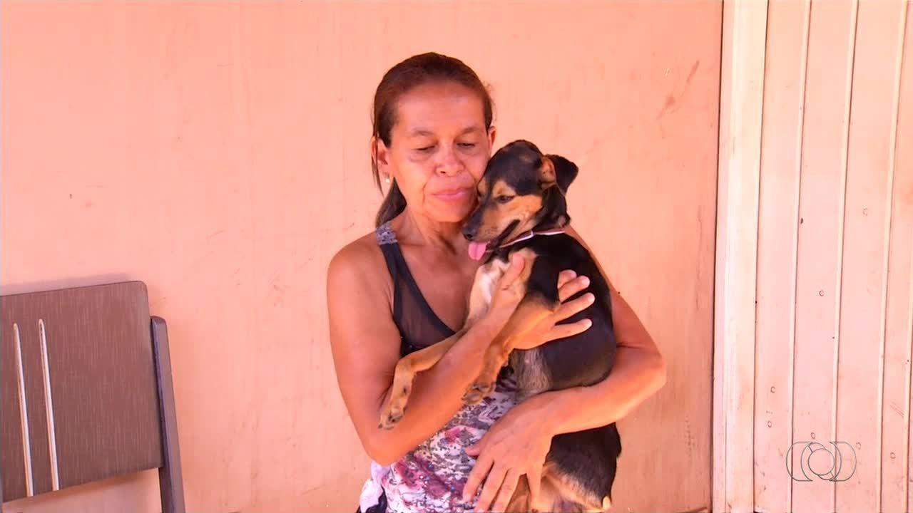 Cadela que sofria maus-tratos é resgatada depois de vídeos serem divulgados na internet