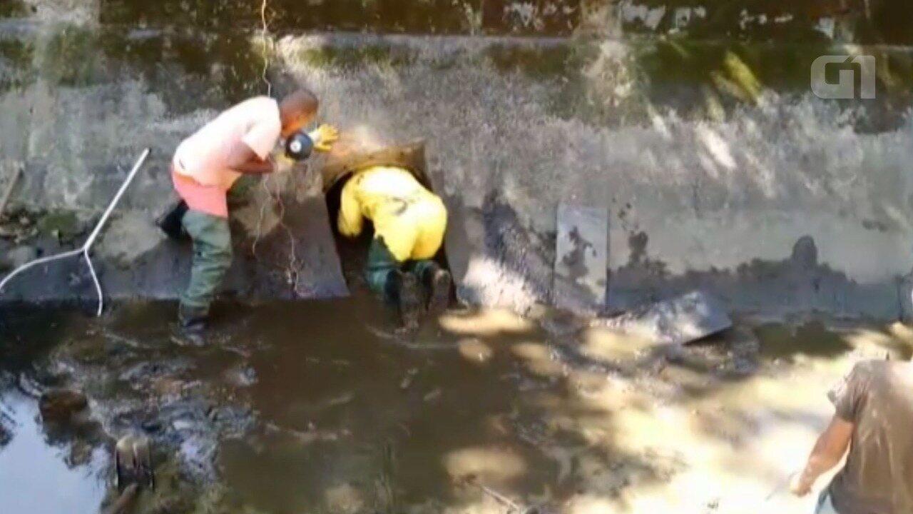 Bombeiros tentam resgate de cachorro preso em tubulação de canal em Santos, SP