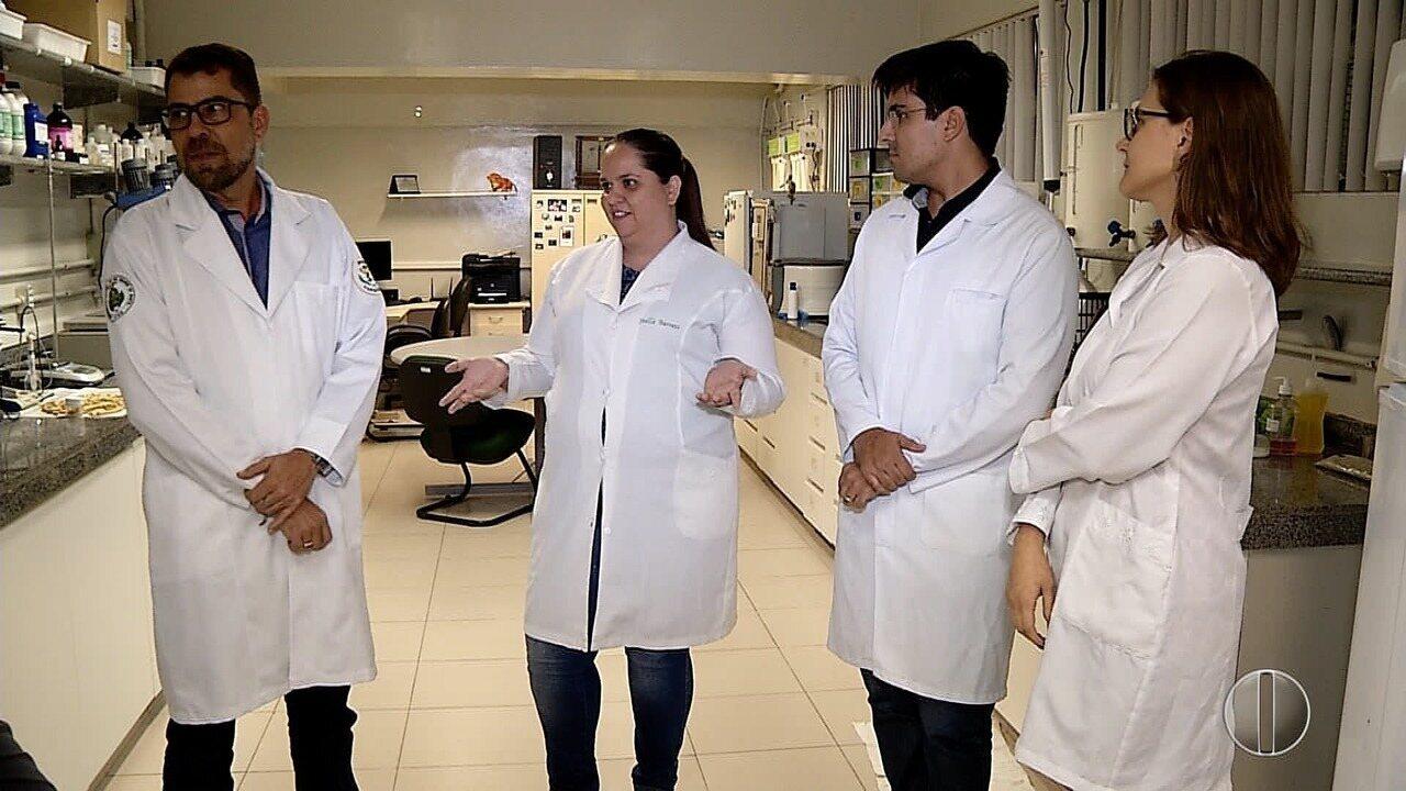 Pesquisas da UFRN descobrem que plantas do sertão nordestino trazem benefícios para a pele