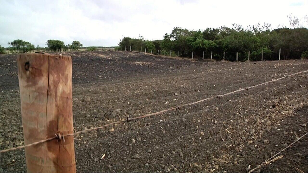 Inter TV Rural relembra período de seca do Norte e Noroeste Fluminense; confira