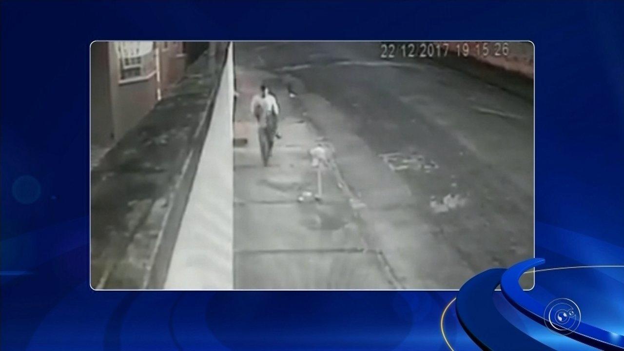 Câmera de segurança registra furto de pinscher em Itapetininga