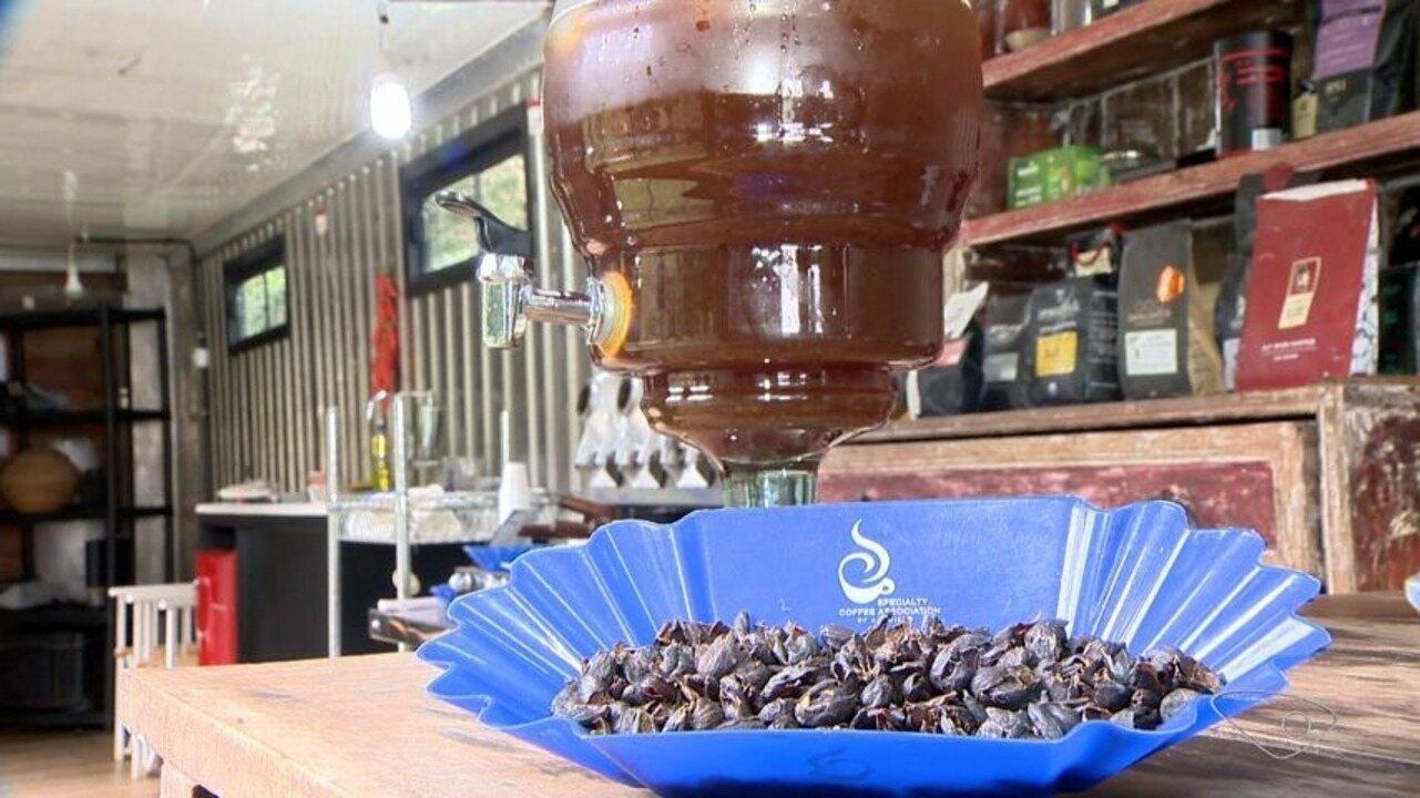 Café de Pedra Azul vence o concurso de cafés especiais mais importante do Brasil