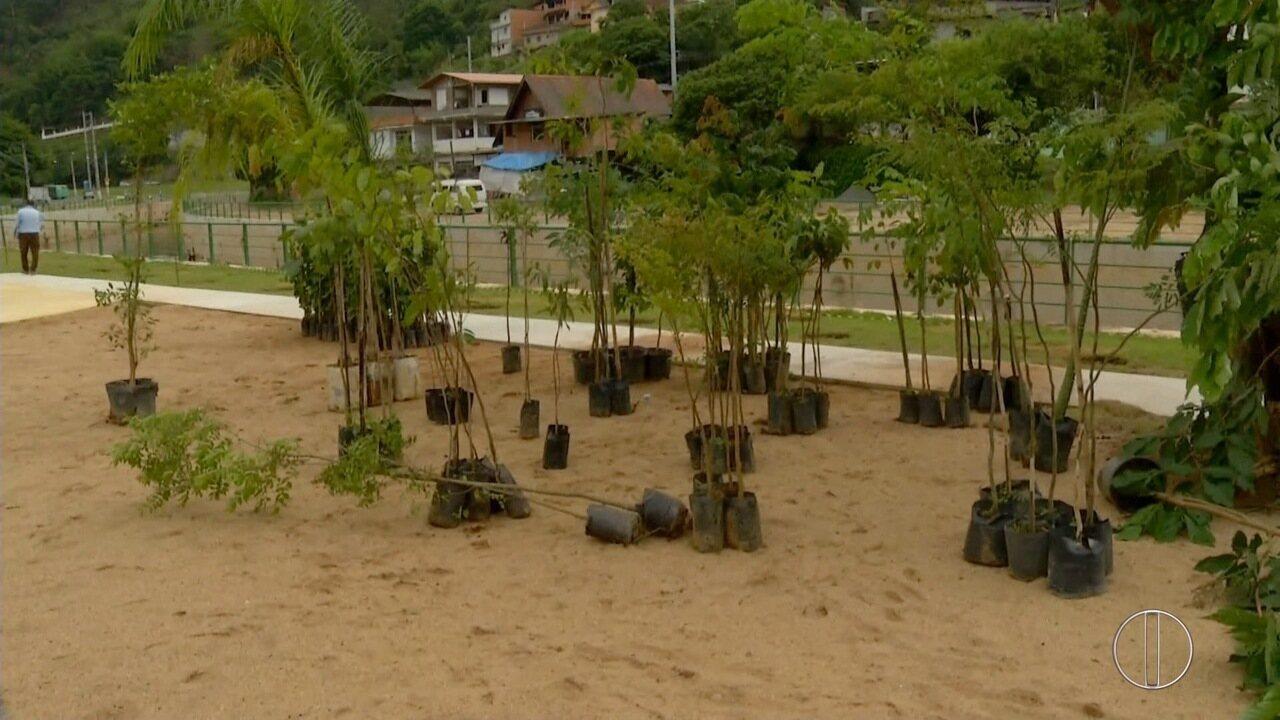 Inea faz plantio de mudas às margens do Rio Bengalas, em Nova Friburgo, no RJ