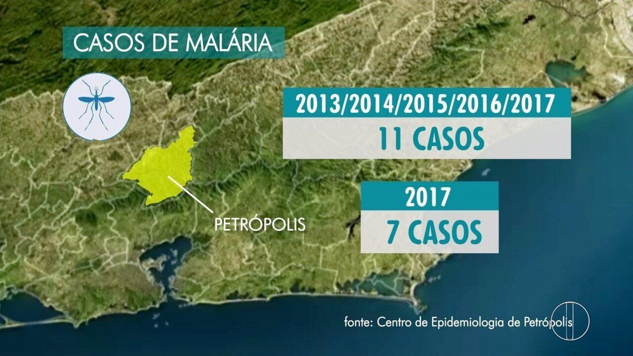 Malária, transmitida por mosquitos da Mata Atlântica, preocupa população de Petrópolis