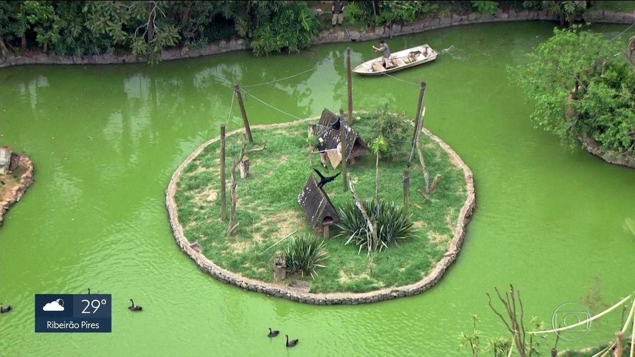Secretaria Estadual da Saúde fecha Zoológico e outros três parques da zona sul da capital
