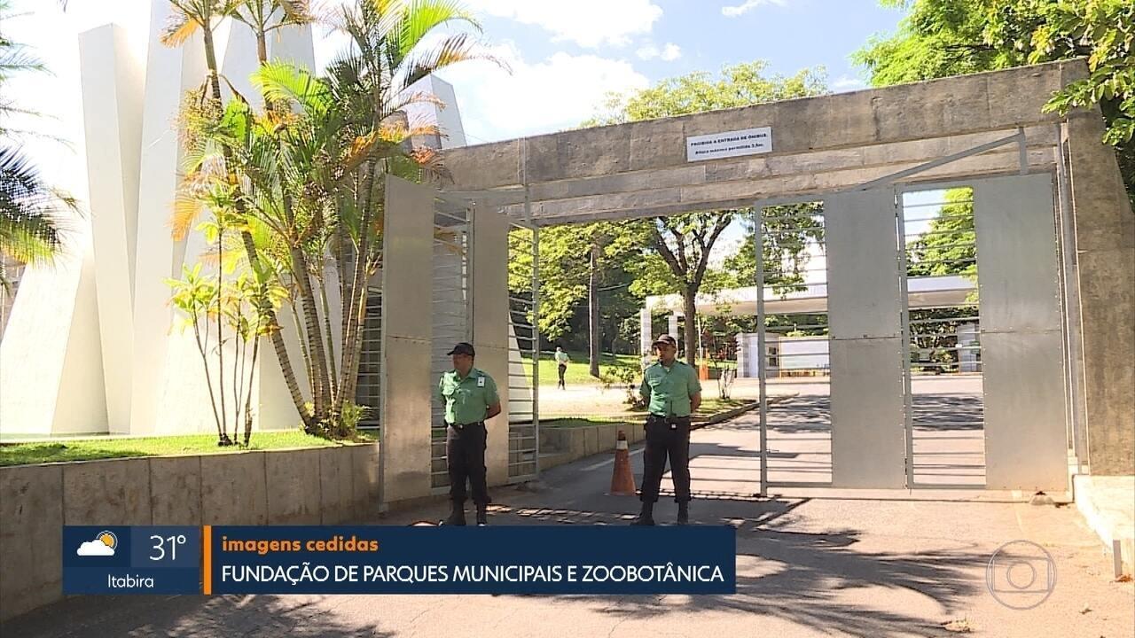 Zoológico de Belo Horizonte é fechado por causa da febre amarela