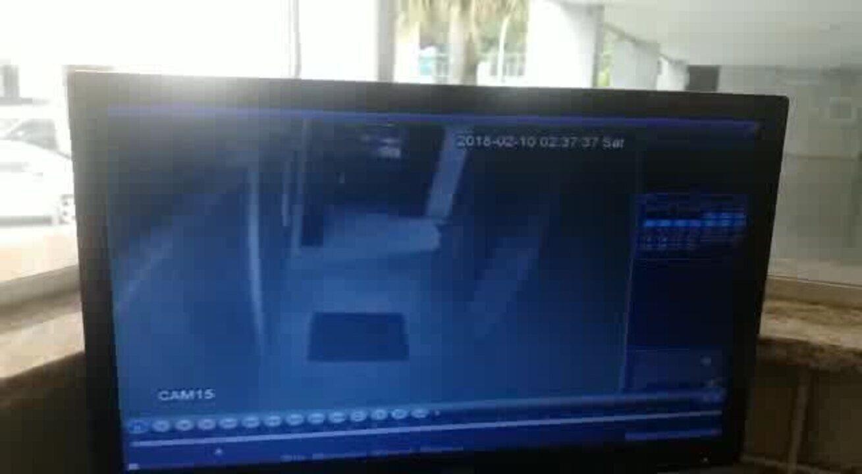 Vídeo mostra homem agredindo cadela em prédio da Asa Norte, em Brasília