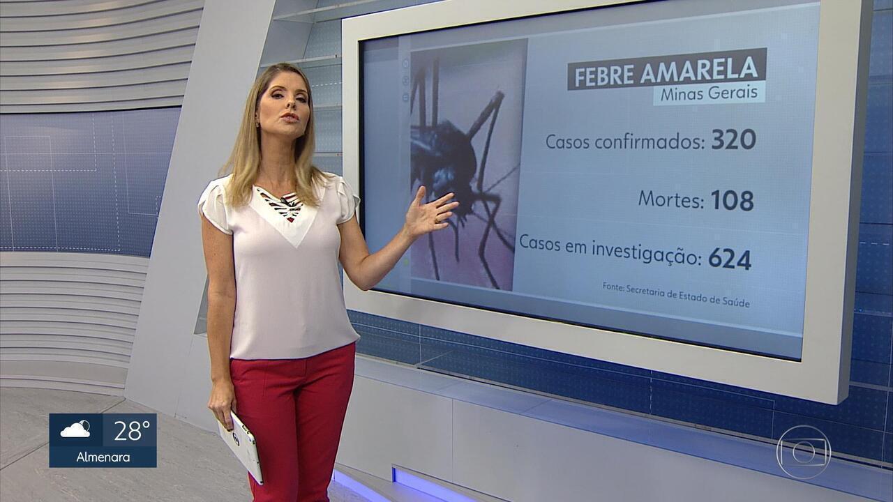Mortes por febre amarela passam de 100 em Minas