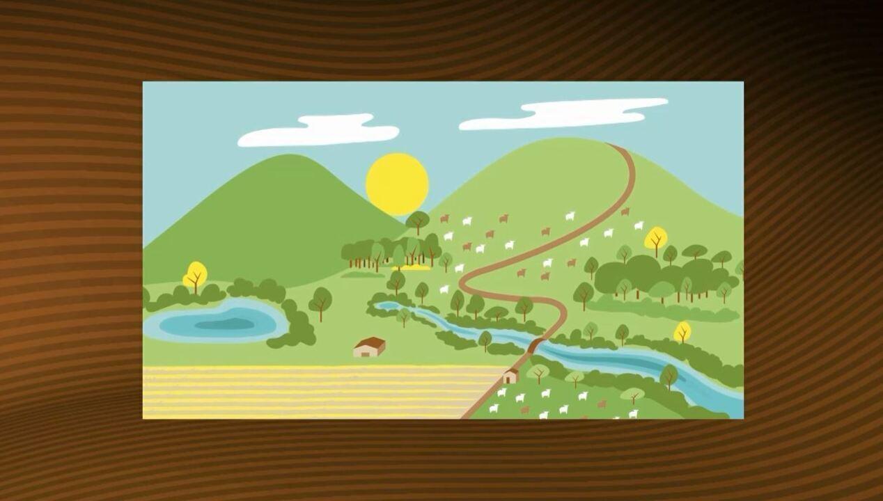 Saiba tudo sobre o Cadastro Ambiental Rural
