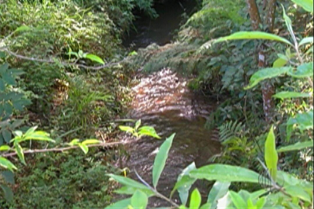 8606324210377 Projeto em Suzano busca recuperar e preservar manancial da região