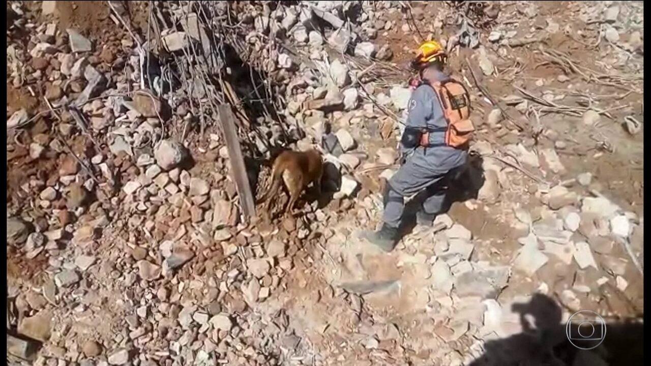 Bombeiros descobrem mais fragmentos de ossos nos escombros do prédio em São Paulo