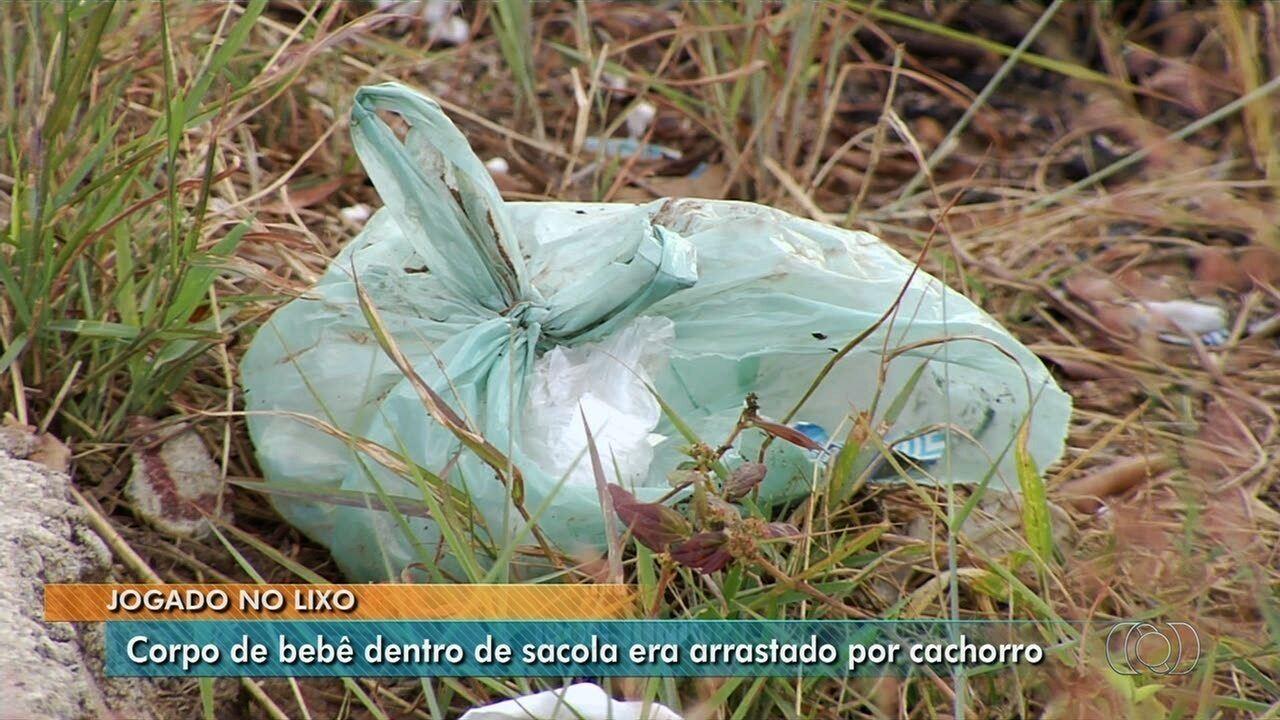 Corpo de bebê é encontrado dentro de sacola plástica em Aparecida de Goiânia