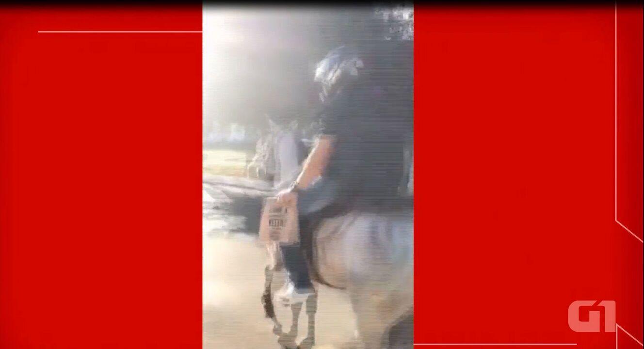 Hamburgueria do DF usa cavalo para fazer entrega de lanches