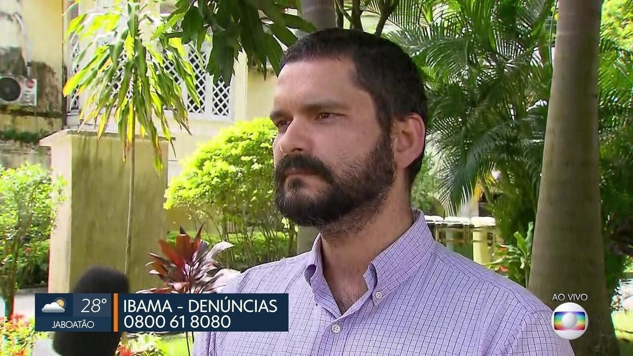 Ibama realiza operação contra tráfico de animais pela internet em Pernambuco