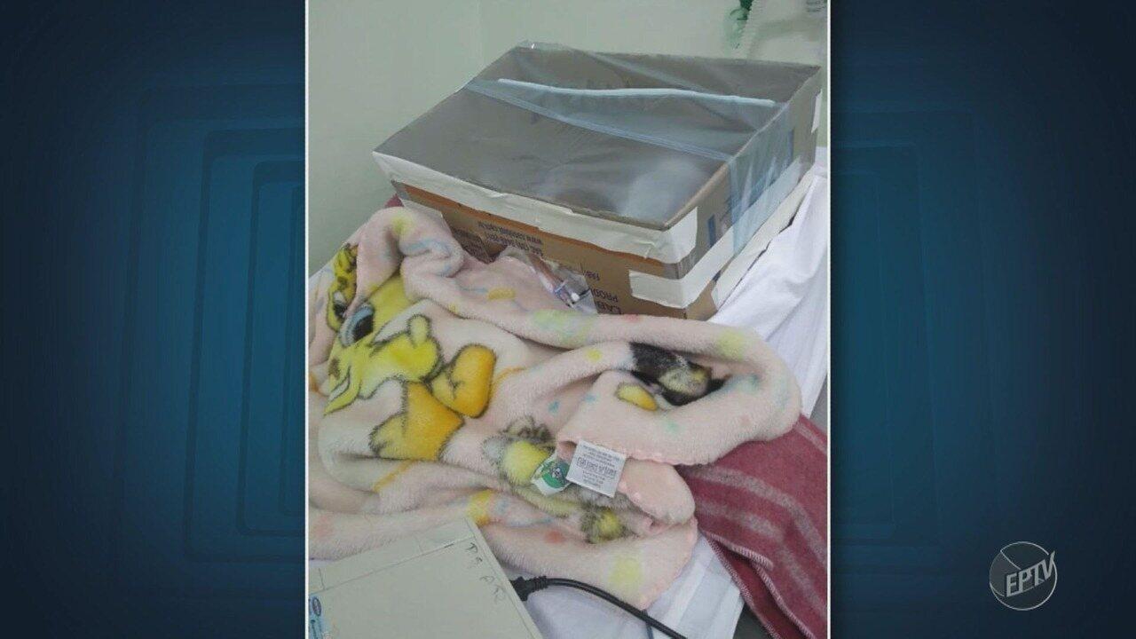 Imagem de bebê dentro de caixa de papelão em PS de Santa Bárbara d'Oeste viraliza