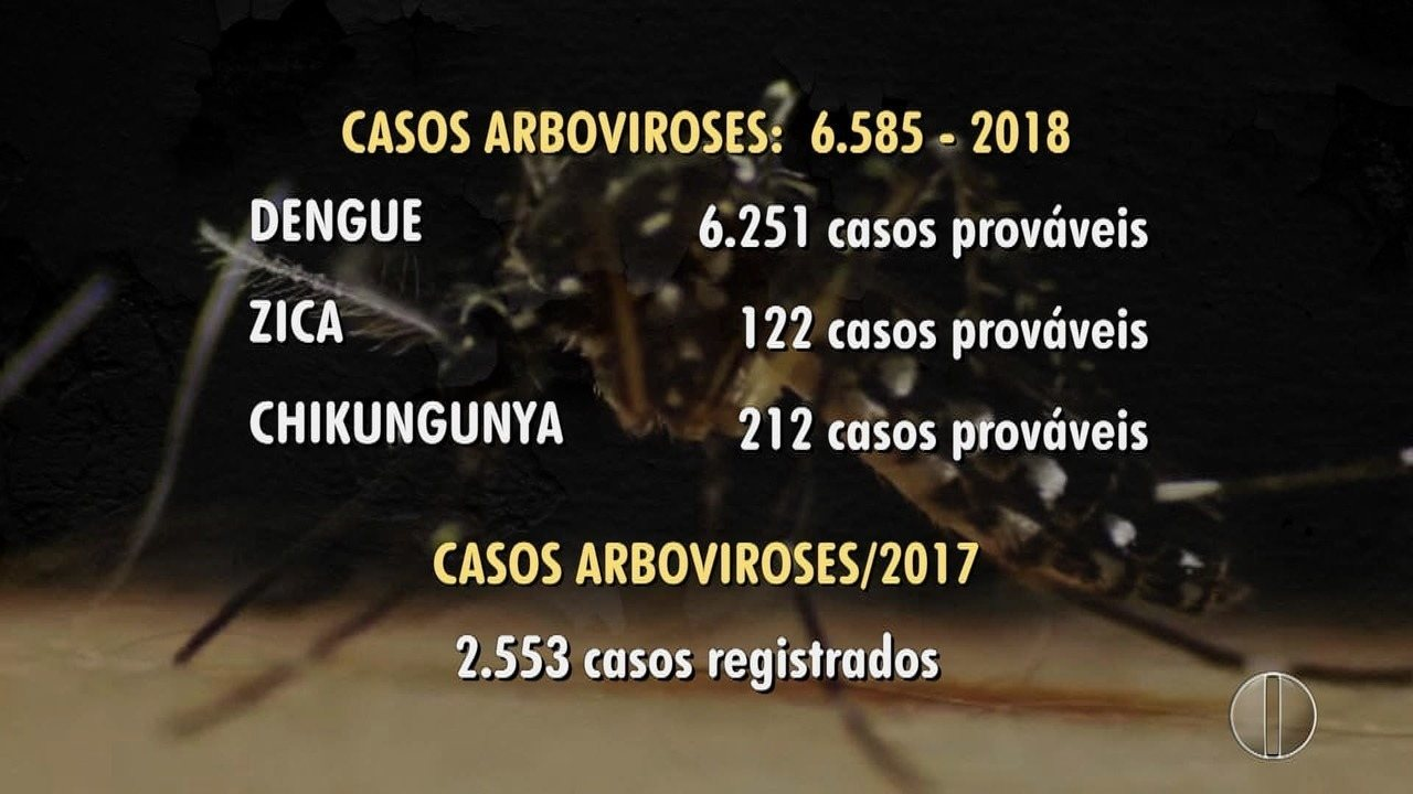 Natal registra 6.585 casos de dengue, zika e chikungunya em 2018