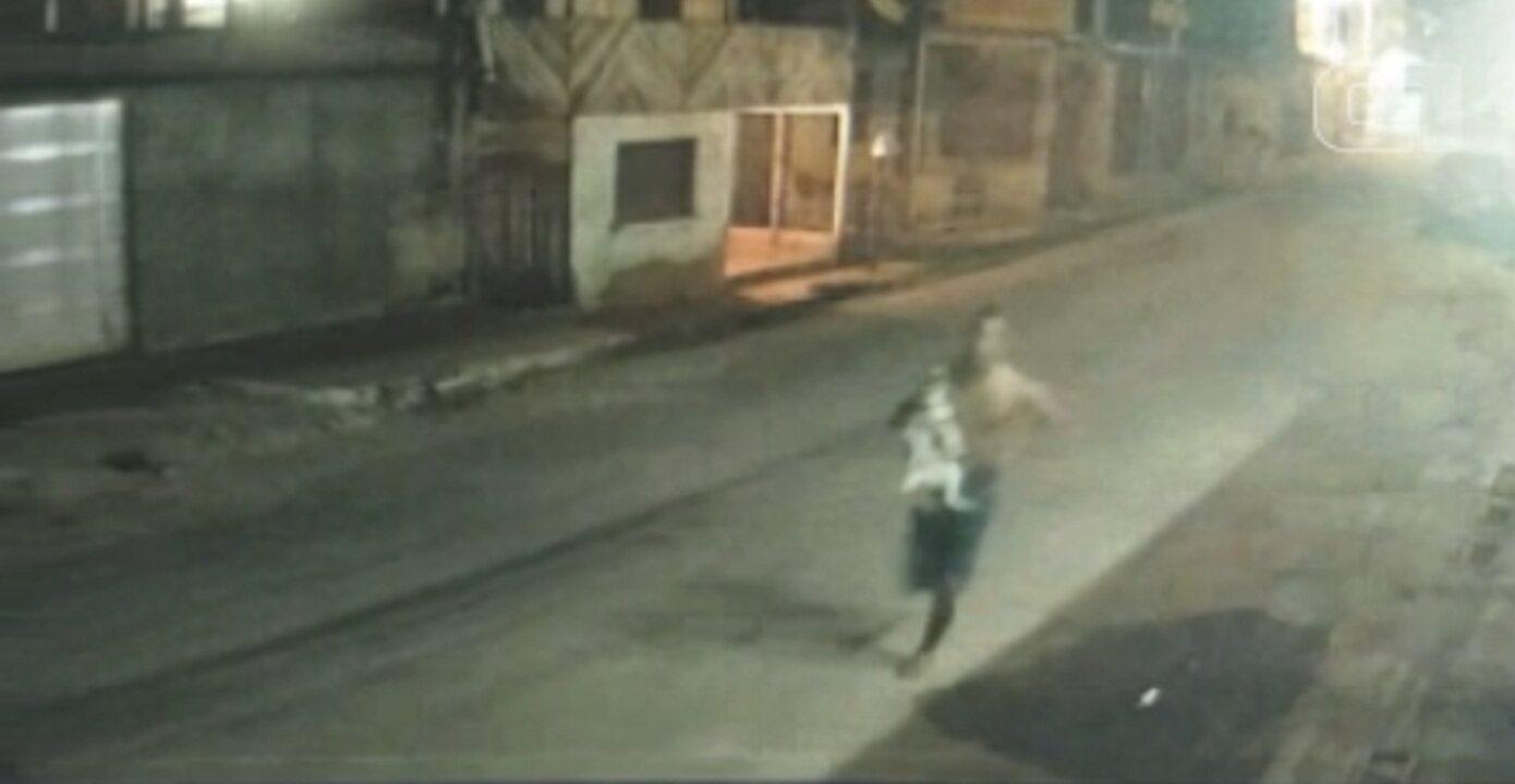 Ladrão invade casa em Macapá para roubar filhotes de cães da raça husky siberiano