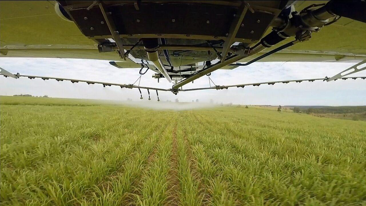Aviões são cada vez mais usados na agricultura