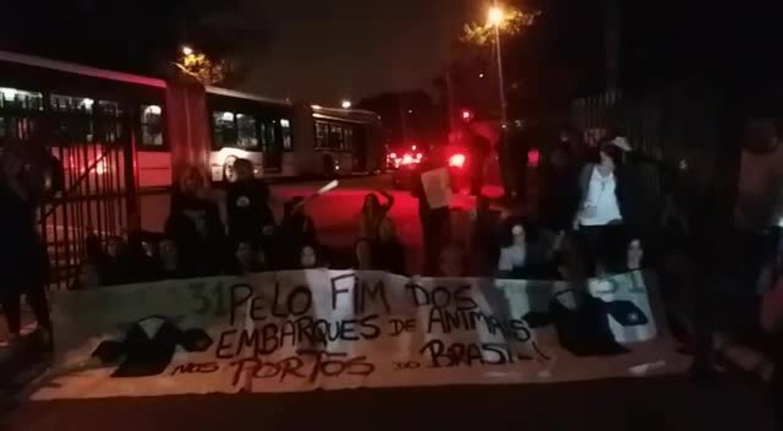 Manifestantes protestam pela votação da PL dos bois na Alesp