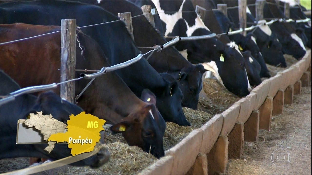 Preço do leite sobe em Minas Gerais