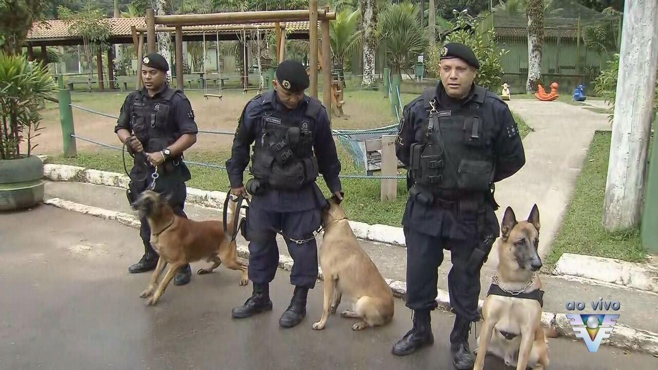 Guarda Municipal de São Vicente tem novo mascote