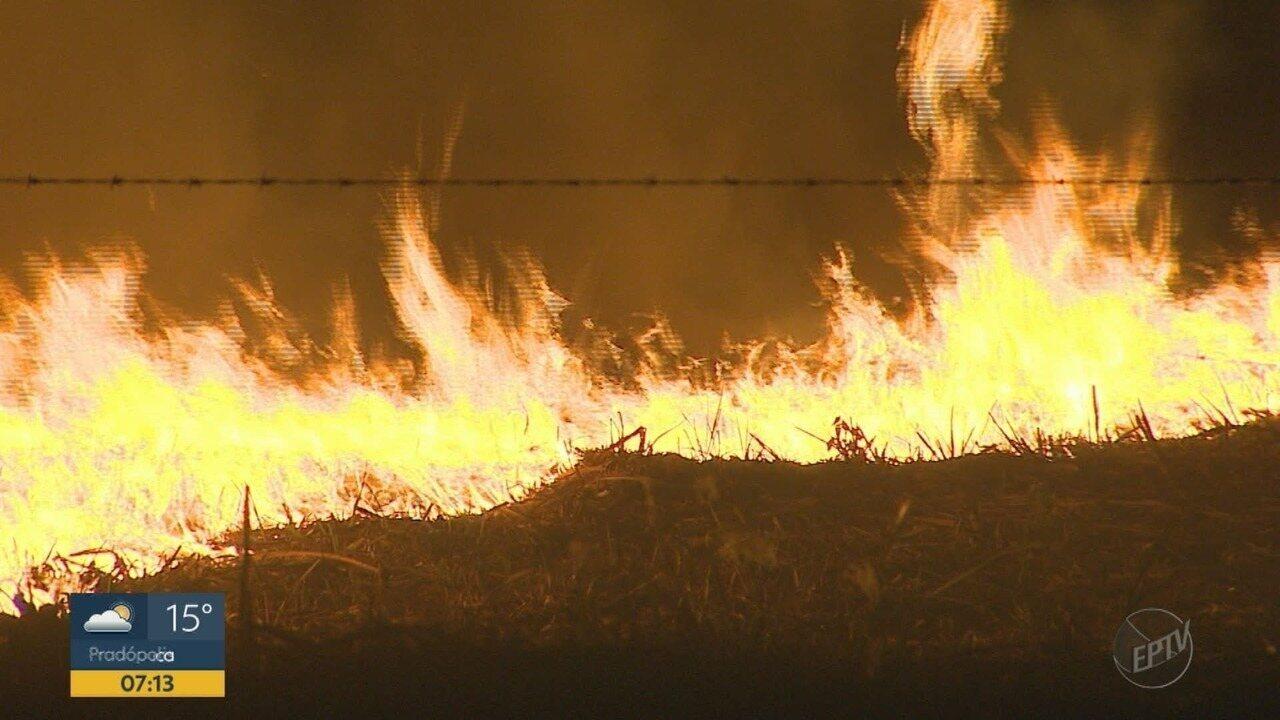 Incêndio dura 7 horas e destrói mata na zona oeste de Ribeirão Preto