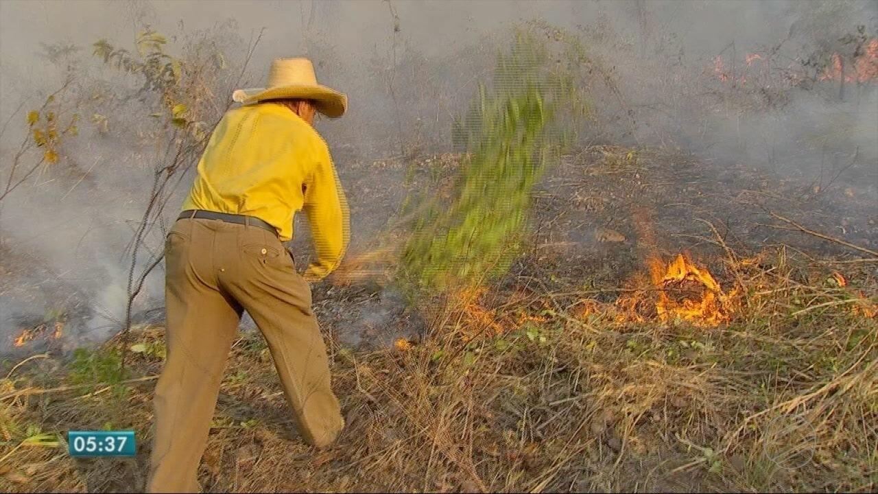 8815baf4e7a42 Bombeiros tentam apagar incêndio que atinge morro de Santo Antônio ...