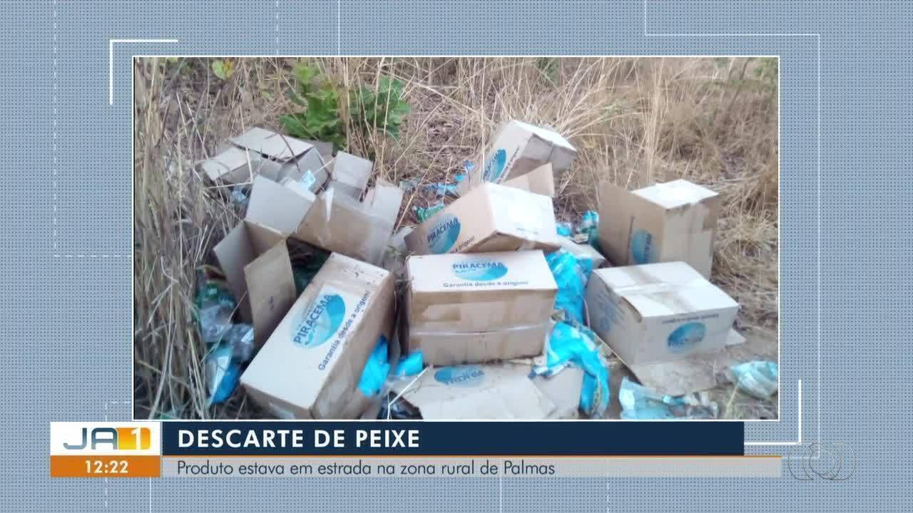Telespectador denuncia descarte irregular de peixe na zona rural de Palmas