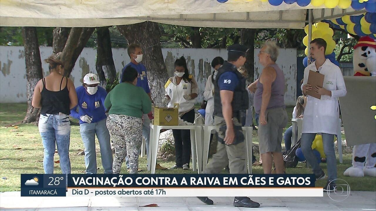 Dia D de vacinação contra raiva imuniza animais no Grande Recife