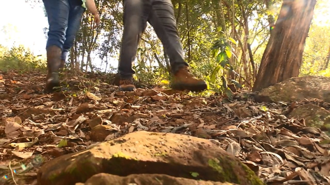 Califórnia: Plug viaja para as cidades gringas paranaenses (parte 1)
