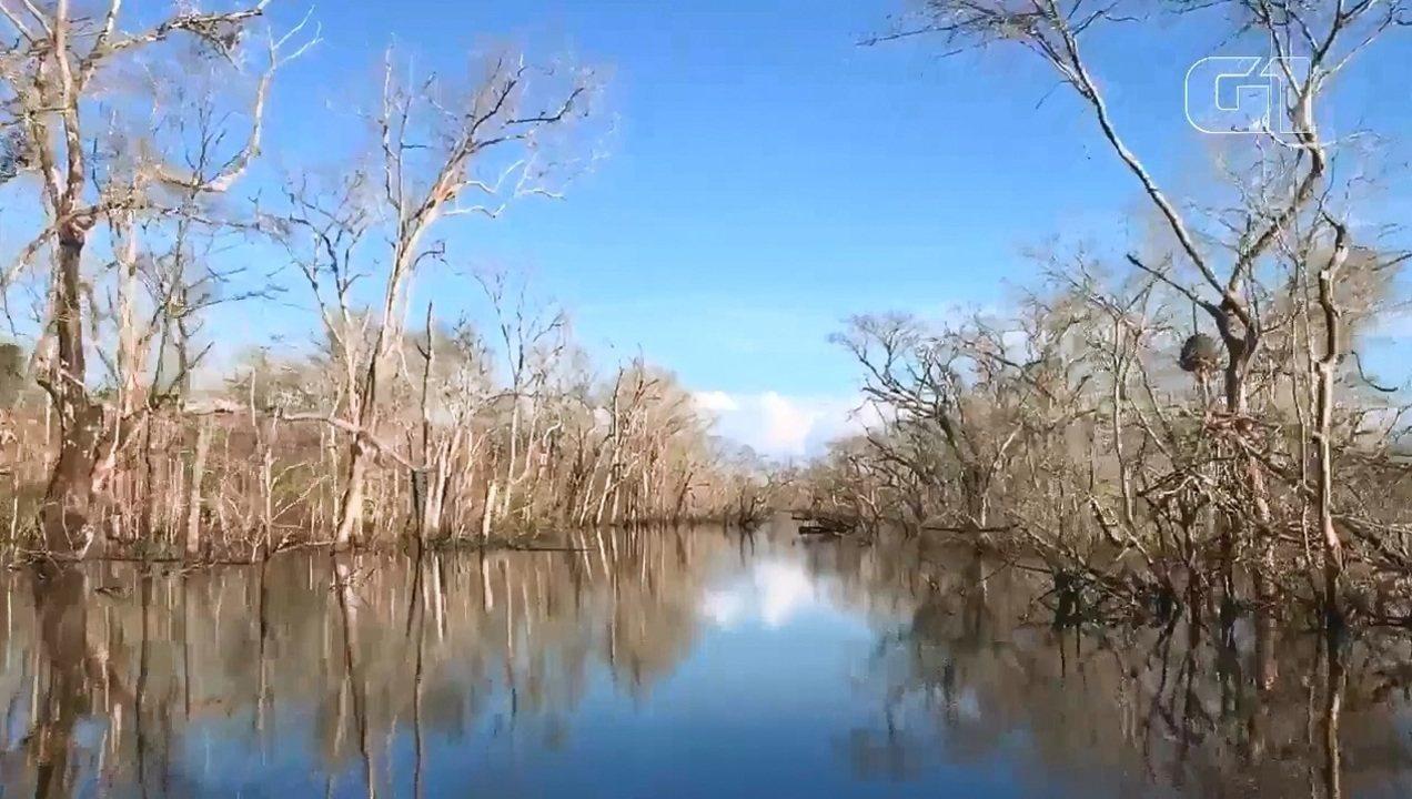 Vídeo foi gravado em um trecho do Rio Araguari, no Amapá