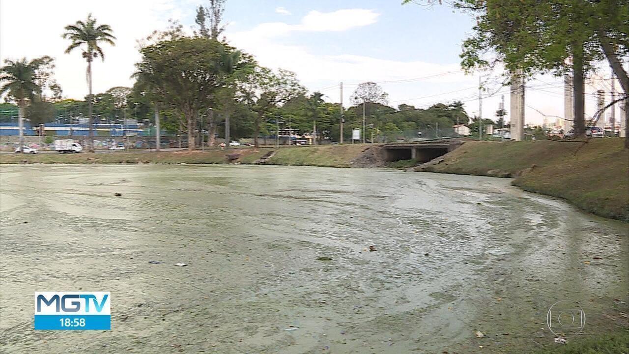 Serviço para recuperar qualidade da água da Lagoa da Pampulha é retomado