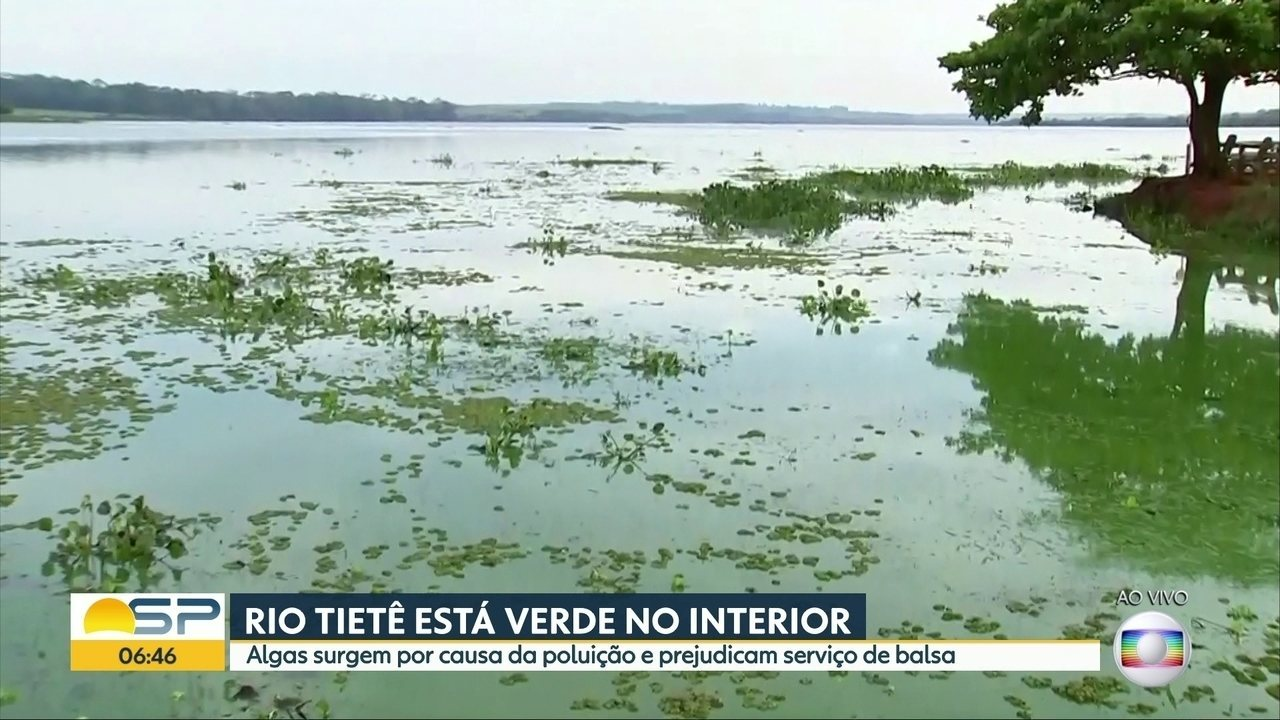 Rio Tietê está verde no interior de São Paulo