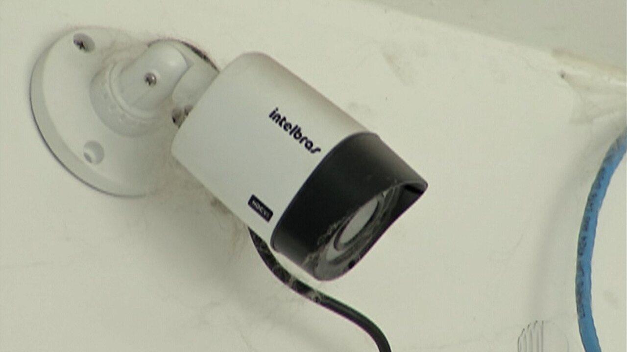 Lei municipal exige que empresas de banho e tosa tenha câmera de monitoramento, em Mogi