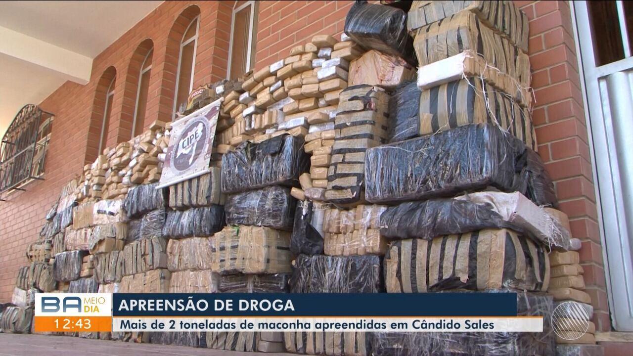 Polícia apreende duas toneladas de maconha em Cândido Sales