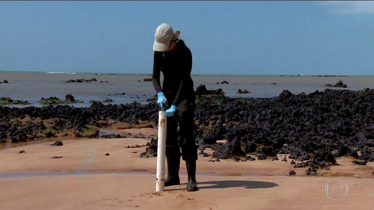 Pesquisadores fazem levantamento das consequências da lama de Mariana no ES